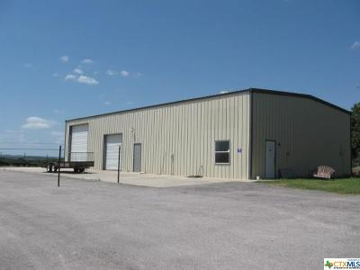 Kempner Commercial For Sale: 159/163 County Road 4807