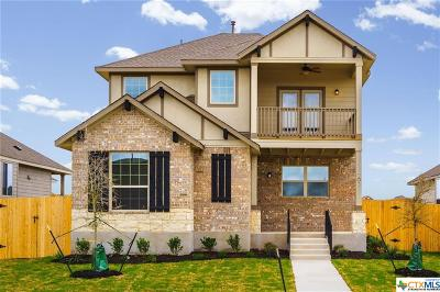 Hays County Single Family Home For Sale: 202 Alford