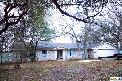 Belton Single Family Home For Sale: 77 Arrowhead Point