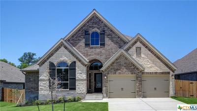 Boerne Single Family Home For Sale: 116 Boulder Creek