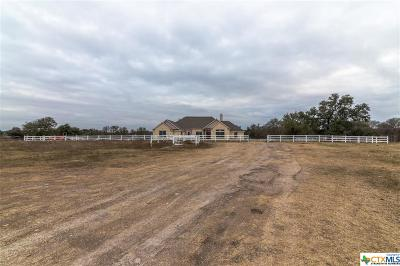 Salado Single Family Home For Sale: 12299 Blackberry Road