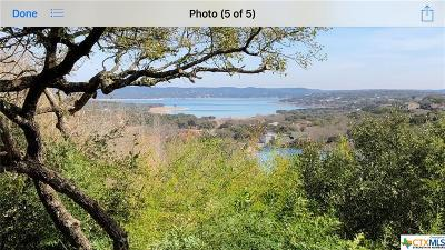 Canyon Lake Single Family Home For Sale: 159 Olive Hill