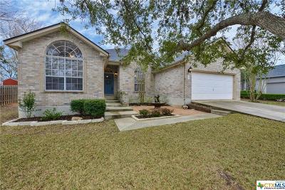 San Antonio Single Family Home For Sale: 2142 Encino Cliff Street