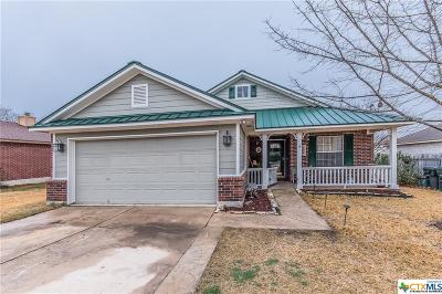 Kyle Single Family Home Pending Take Backups: 174 Jim Miller