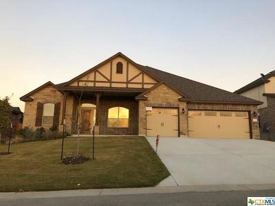 Belton Single Family Home For Sale: 4602 Guildford Drive