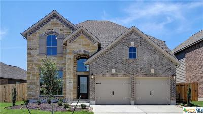 San Marcos Single Family Home For Sale: 216 Lacey Oak Loop