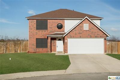 San Antonio Single Family Home For Sale: 9502 Cliff Creek