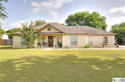 Seguin Single Family Home For Sale: 1448 Prairie Rose