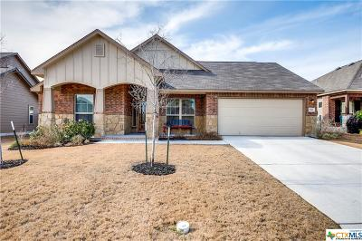 New Braunfels Single Family Home For Sale: 739 Stratus Path