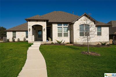 New Braunfels Single Family Home For Sale: 295 Allemania