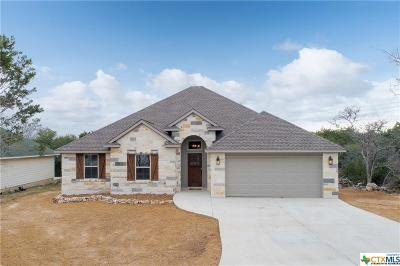 Wimberley Single Family Home For Sale: 41 Whistling Wind Lane