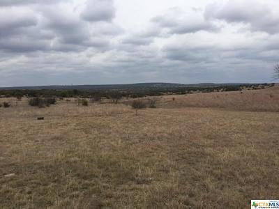 Lampasas County Residential Lots & Land For Sale: Tbd County Road 2001