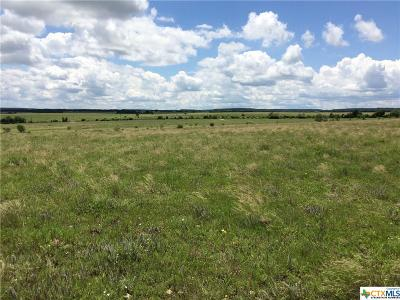 Lampasas County Residential Lots & Land For Sale: Tract 17 County Road 2001