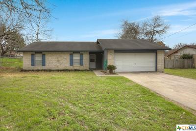 Seguin Single Family Home For Sale: 205 Meadow Lake Drive