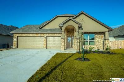 New Braunfels Single Family Home For Sale: 844 Gray Cloud Drive