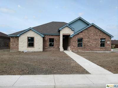 Jarrell TX Single Family Home For Sale: $264,900