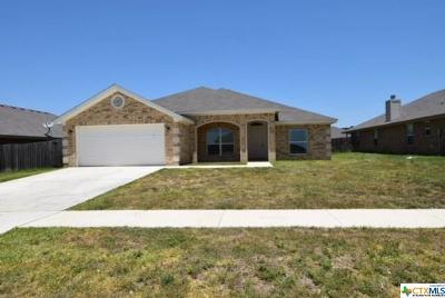 Killeen Single Family Home For Sale: 2703 Alamocitos Creek Drive