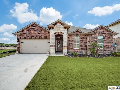 Cibolo Single Family Home For Sale: 308 Minerals