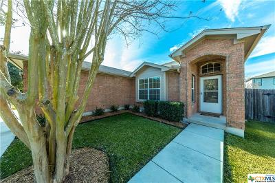 New Braunfels Single Family Home For Sale: 325 Placid Meadow