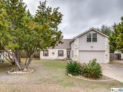 Canyon Lake Single Family Home For Sale: 879 Scenic Drive