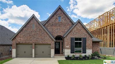 San Antonio Single Family Home For Sale: 14010 Rosetta