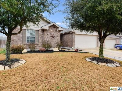 Schertz Single Family Home Pending Take Backups: 3964 Whisper Field