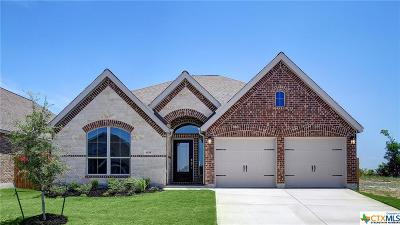 New Braunfels Single Family Home For Sale: 638 Volme