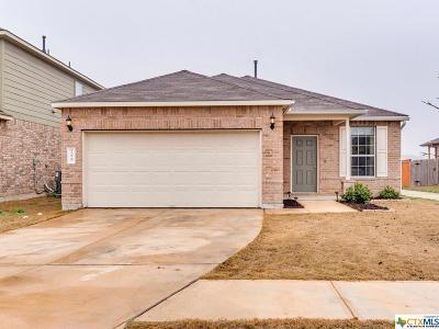 Buda Single Family Home For Sale: 299 Sundown
