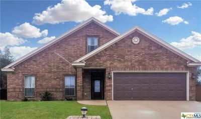 Coryell County Single Family Home For Sale: 3504 Churchhill