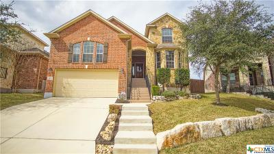 San Antonio Single Family Home For Sale: 24819 Chianti Way