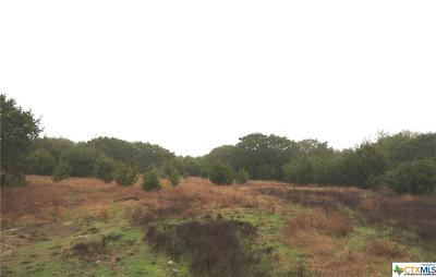 Kempner Residential Lots & Land For Sale: Lot 25b Cr 4766
