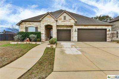 San Antonio Single Family Home For Sale: 9603 Lesters Way