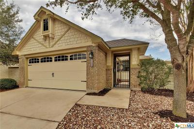 San Marcos Single Family Home For Sale: 202 Old Settlers Drive
