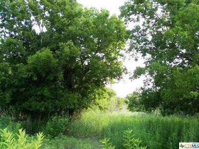 Lampasas County Residential Lots & Land For Sale: Tbd County Road 3421
