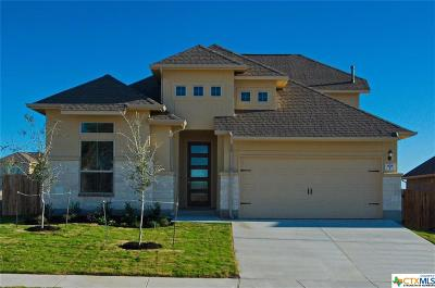 Cibolo Single Family Home For Sale: 928 Foxbrook Way