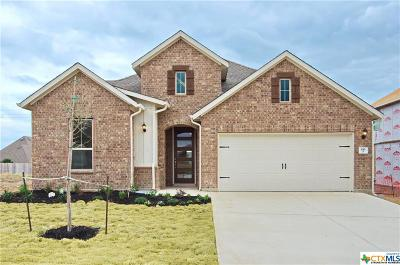 Cibolo Single Family Home For Sale: 816 Silver Fox