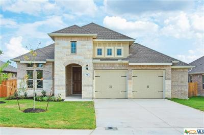 Cibolo Single Family Home For Sale: 832 Silver Fox