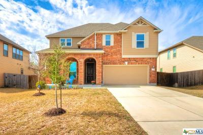 Kyle Single Family Home For Sale: 151 Sunnyside Drive