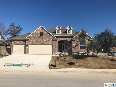 San Antonio Single Family Home For Sale: 4502 El Bosque