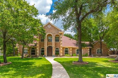 Belton, Temple Single Family Home For Sale: 4220 Lago Vista Drive