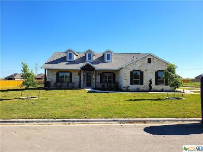 Salado Single Family Home For Sale: 4113 Big Brooke Drive