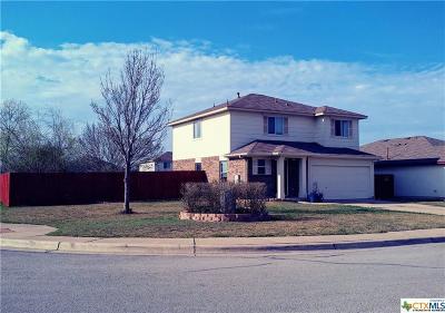 Kyle Single Family Home Pending Take Backups: 304 Musgrav