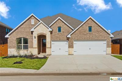 San Antonio Single Family Home For Sale: 12023 White River