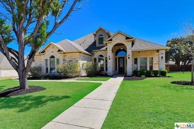 New Braunfels Single Family Home For Sale: 254 Allemania