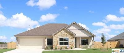 Temple TX Single Family Home For Sale: $238,000