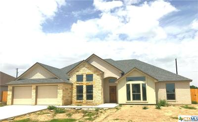 Temple TX Single Family Home For Sale: $247,000