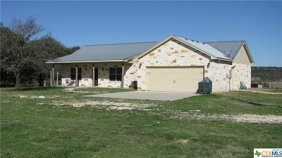 Bosque County, Bell County, Burnet County, Calhoun County, Coryell County, Lampasas County, Limestone County, Llano County, McLennan County, Mills County, Milam County, San Saba County, Williamson County, Hamilton County, Travis County, Comal County, Comanche County, Kendall County Single Family Home For Sale: 26351 Us Highway 281