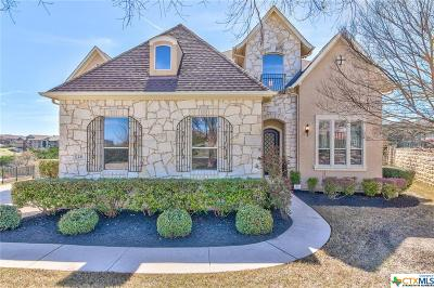Austin Single Family Home For Sale: 233 Vailco Lane