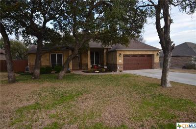 Belton Single Family Home For Sale: 2504 Twin Ridge Court