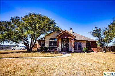 Belton Single Family Home For Sale: 140 Spring Meadow